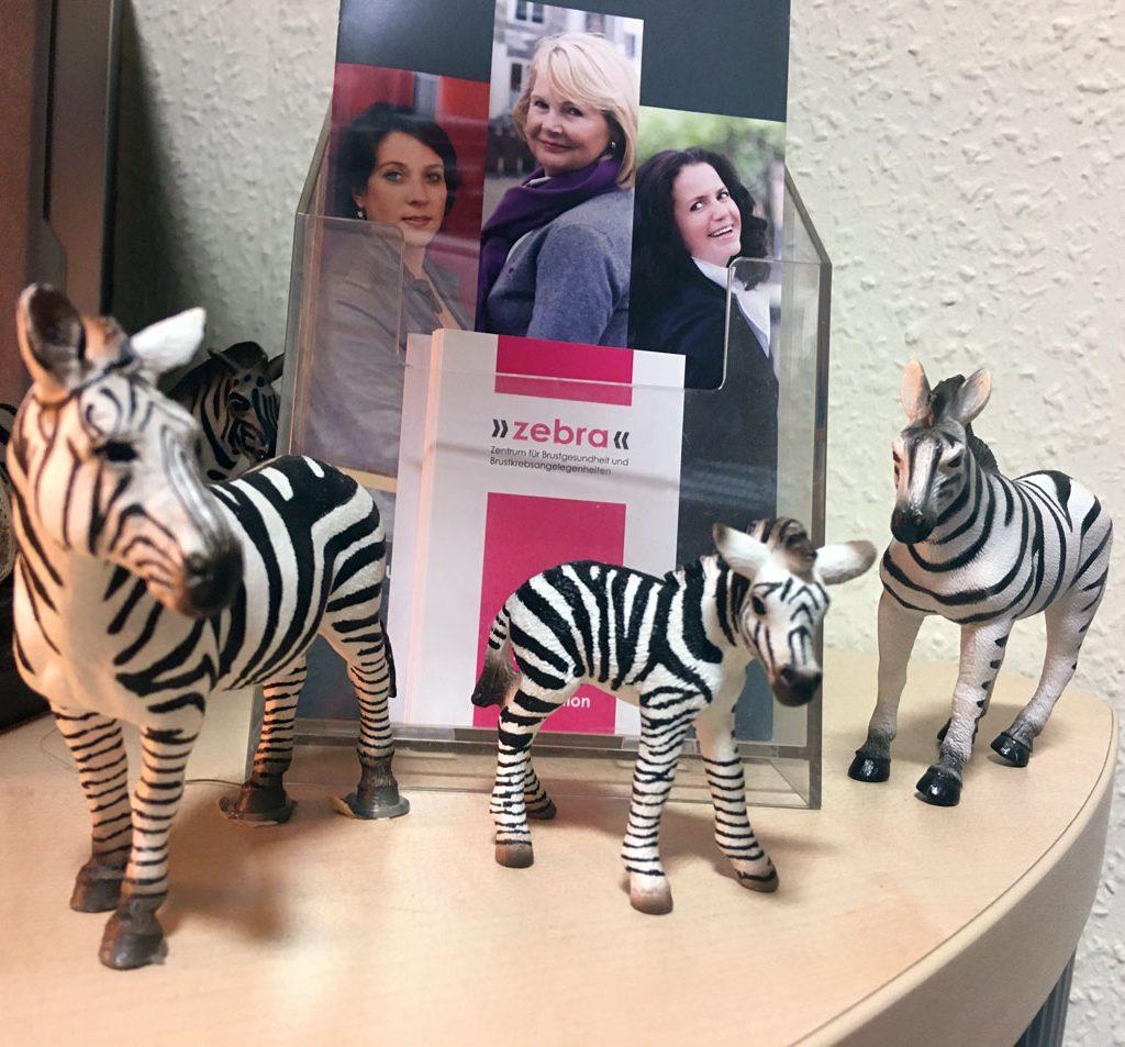 Brustkrebs-Beratungs-Zentrum-Zebra-Zebras