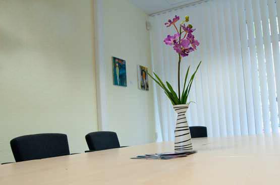zebra-Brustkrebs-Beratung-Hilfe-Information_Vase
